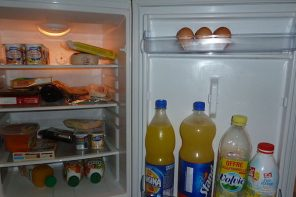 food_into_a_refrigerator_-_20111002